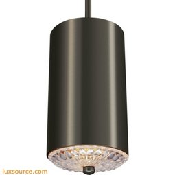 Botanic Light Mini-Pendant - 1 - Light - Clear