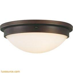 Gravity Light Indoor Flush Mount - 2 - Light